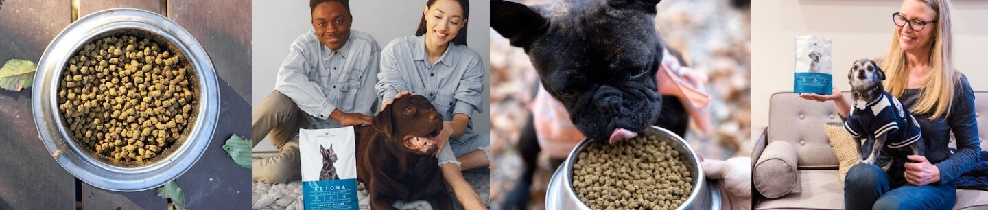 Image strip of Ketona dogs and owners feed their pups kibble.